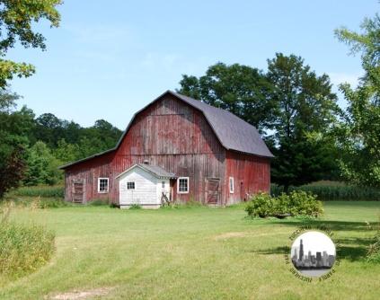 fattoria americana