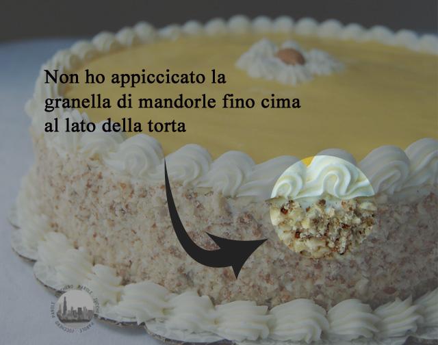foto granella sul lato della torta