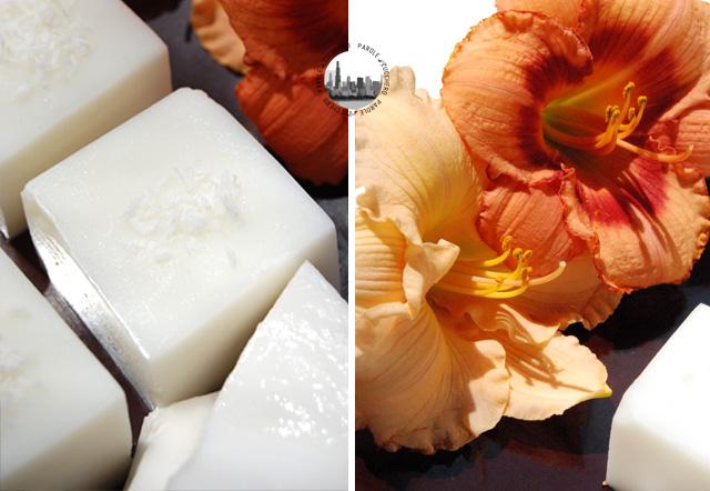 Dolci regionali haupia hawaiiano parole di zucchero for Siti ricette dolci